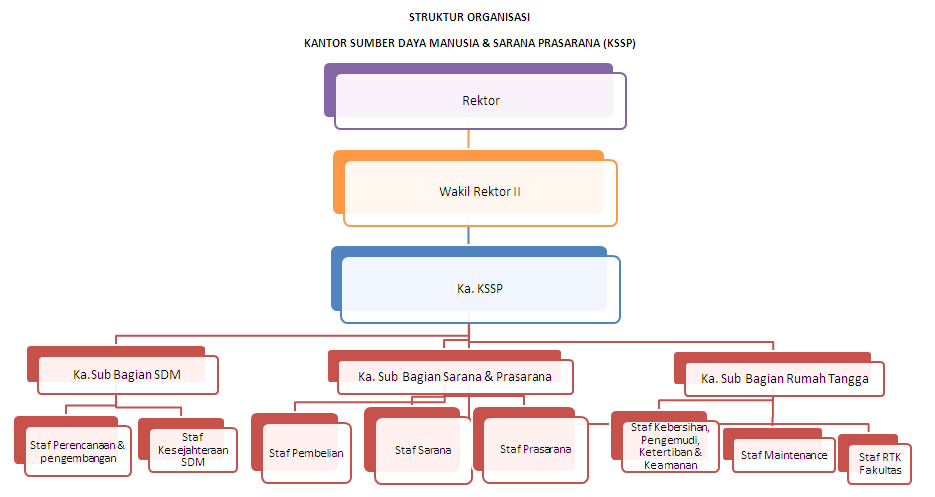 struktur-organisasi-kssp-ukmc